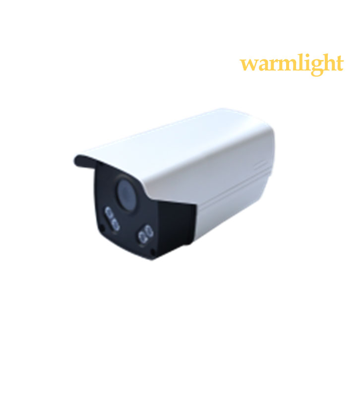 2MP IP Warm Light camera IP66 4 IR LED