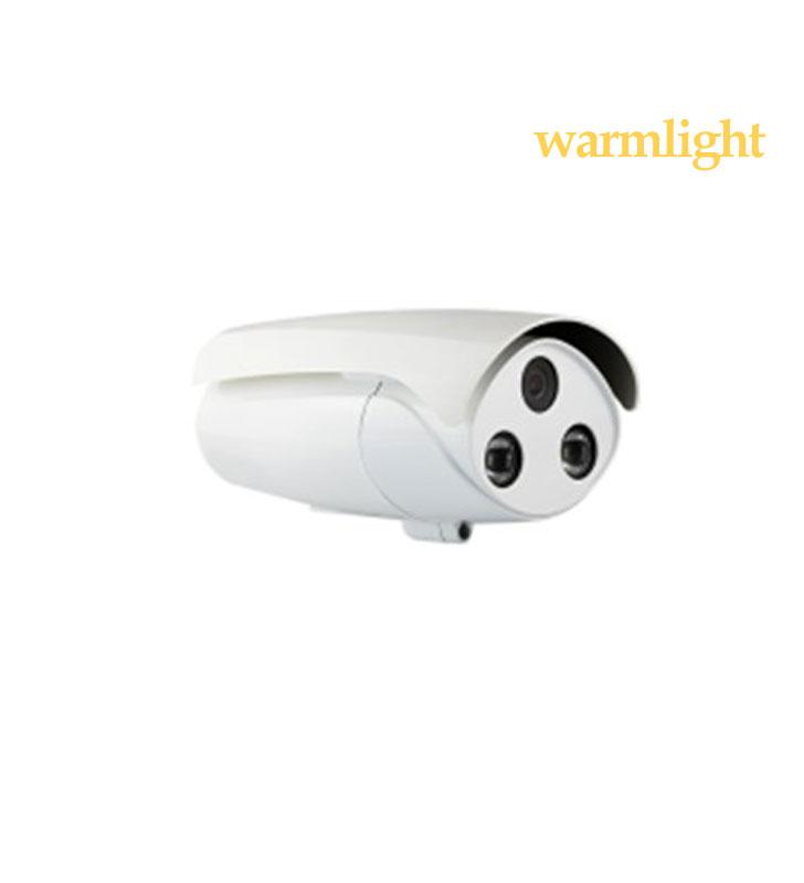 2MP IP Warm light camera IR 15-30m