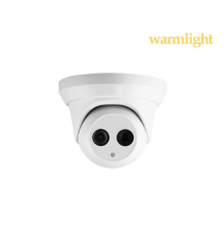 2MP IP Warm Light HD dome camera IP65